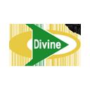 Devine Fabrics Limited
